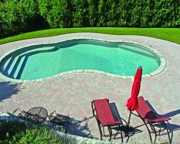 Inground Pool Designs Mountain Pond Shape