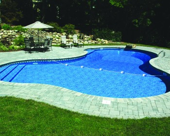 Lagoon Inground Pool Design Ideas