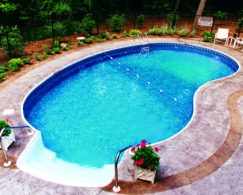 Kidney-Inground Pool Design Ideas