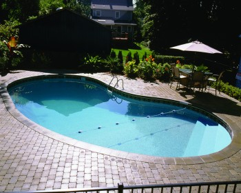 kidney Pool Design Ideas Gallery